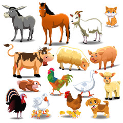 farm animals like donkey, horse, cow, sheep, pig and others