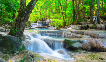 Wall Mural - Cool waterfall in tropical forest