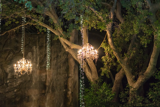 Chandeliers and lights hanging from trees in the woods