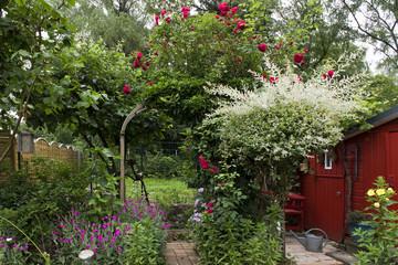 Garten, hintere Ecke, bunt, Pflanzen