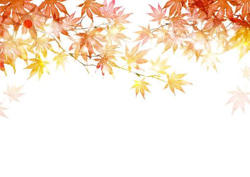 秋 紅葉 背景 フレーム 水彩 イラスト