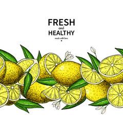 Lemon border vector drawing. Citrus fruit frame template.