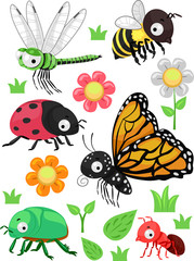 Insects Flowers Elements Illustration