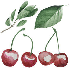 watercolor cherry berry set isolated illustration