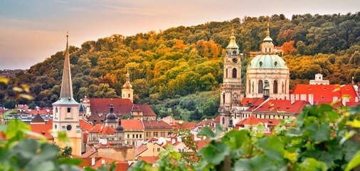 Vineyard of Prague and St Nicholas church, Czech Republic