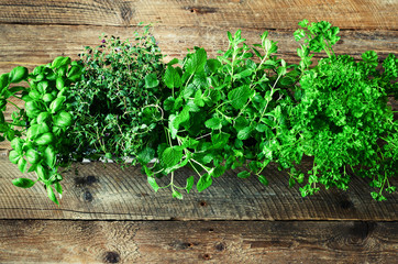 Collection of fresh organic herbs (melissa, mint, thyme, basil, parsley) on wooden background. Banner. Copy space. Abstract spring or summer concept.