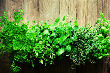 Abstract spring or summer concept. Organic herbs (melissa, mint, thyme, basil, parsley) on wooden background with sunlight and sunny leaks. Banner. Copyspace.