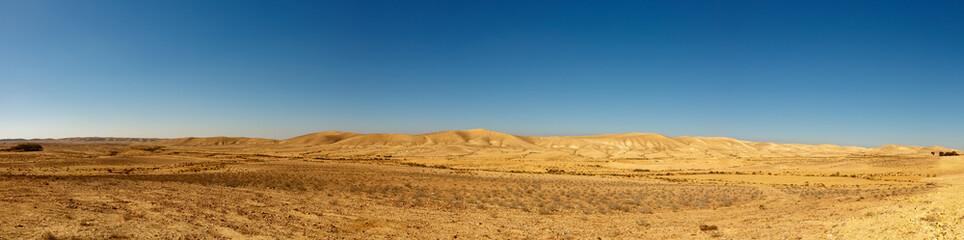 Panorama of desert