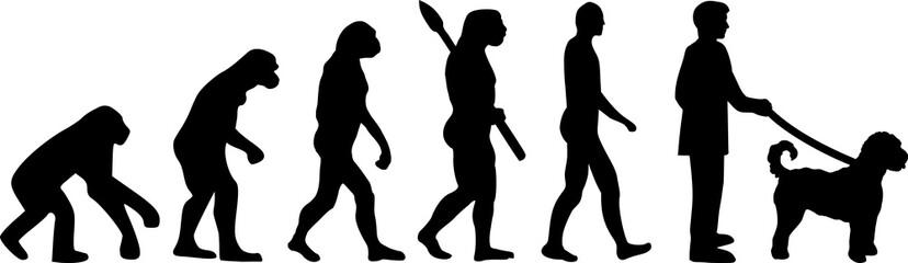 Goldendoodle evolution