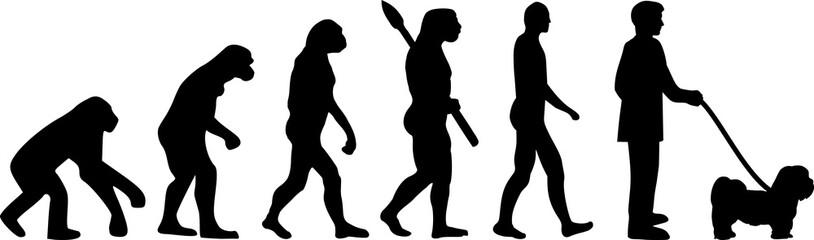 Lhasa Apso evolution