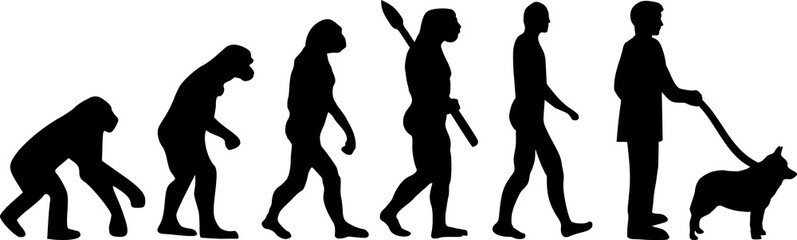 Schipperke evolution