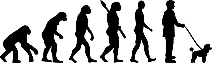 Toy poodle evolution