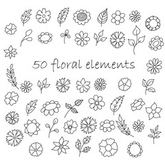 Hand sketched leaves and flowers. Vintage collection. Vector illustration