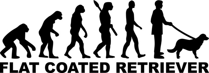 Flat Coated Retriever evolution word
