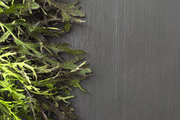 Food background. Fresh arugula, on a black wood background. Many arugula