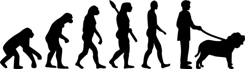 Neapolitan Mastiff evolution