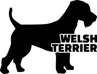 Welsh Terrier silhouette real word