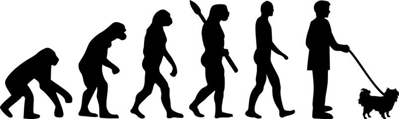 Japanese Chin evolution