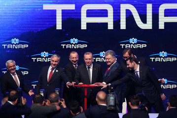 Turkish President Erdogan poses with visiting leaders during the inauguration ceremony of TANAP in Eskisehir