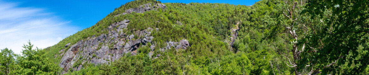 Panoramic view of a wooded cliff in Adirondacks Mountains