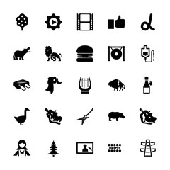 Collection of 25 logo filled icons