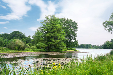Landschaft 597