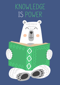 Knowledge is Power. Cute white bear reading book on blue background. Vector illustration
