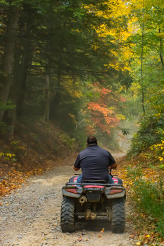 Man Rides ATV in the Woods