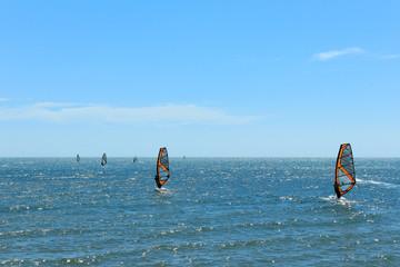 Surfer at beach -   windsurfing on ocean