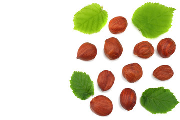 hazelnuts with leaves isolated on white background. top view