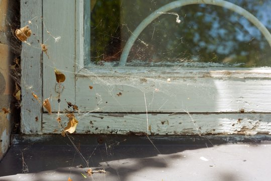 Window detail in the house with a white wooden cracked frame and wrapped in cobweb