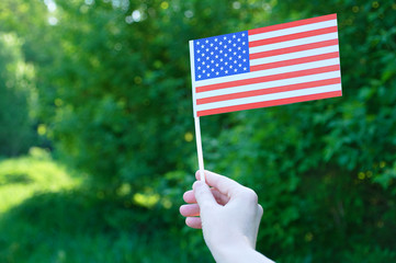 The US flag holds in the hand against a background of green foliage. Close-up.
