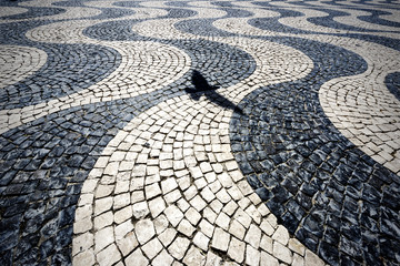 A bird's shadow imposed on a wavy pattern of stones in a square in Lisbon.
