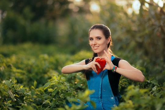 Female Gardener Picking Fresh Organic Red Peppers
