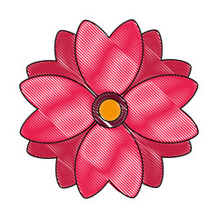 flower natural isolated icon vector illustration design
