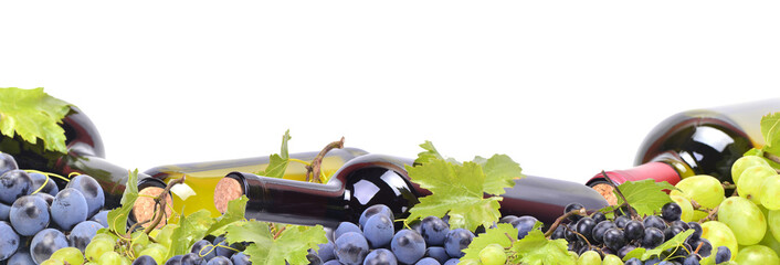 Grape wine on a white background
