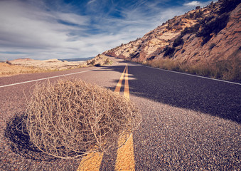 Tumbleweed on a road, color toned picture, Capitol Reef National Park, Utah, USA.