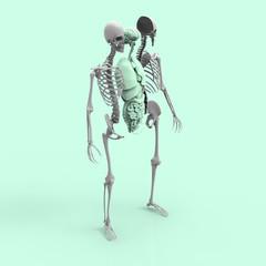 Human Anatomy Skeleton and Organs Pastel 3D Render