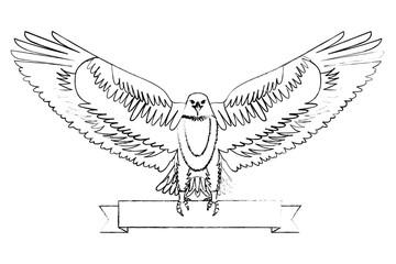 american bald eagle emblem with ribbon vector illustration design