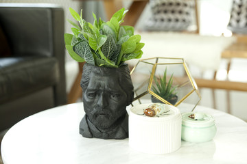 green plant pot on table in living room