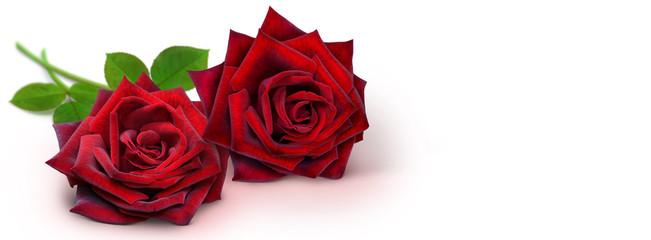 Blumen 938