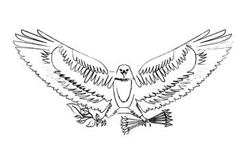 american eagle spread wings with arrows vector illustration sketch
