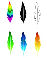 Feather Quill Different Colors