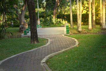 Cement walkway to bridge in park