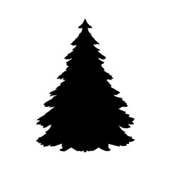 Silhouette spruce tree coniferous flora icon