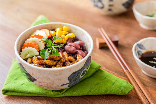 Insects food with Rice Berry