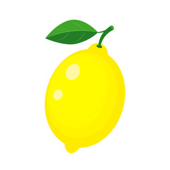 Colorful whole yellow lemon with green leaf.