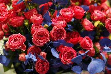 Bouquet of beautiful roses, closeup