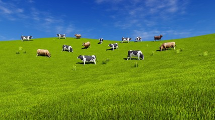 Wall Mural - Herd of mottled dairy cows graze on the open meadow covered with fresh green grass at sunny spring day. Countryside landscape 3D illustration.
