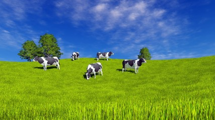Wall Mural - Countryside landscape with mottled dairy cows grazing on green farm pasture under blue cloudy sky at sunny summer day. 3D illustration.
